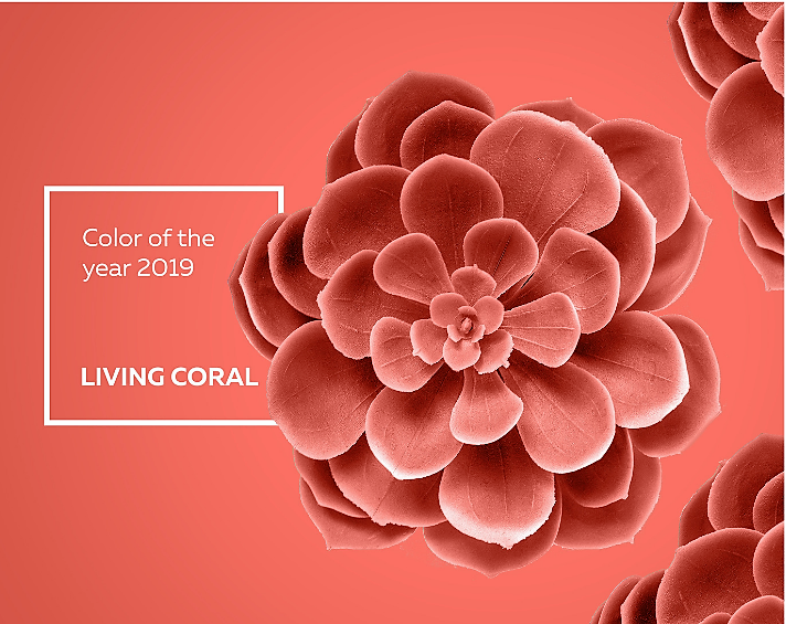 Coral Final